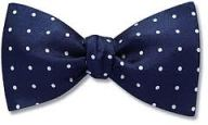 Bow Tie Risk Management