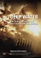 Deepwater Horizon Report